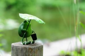 雨が多いですね…   蒲郡にある美容室・ネイルサロン『らぷち』